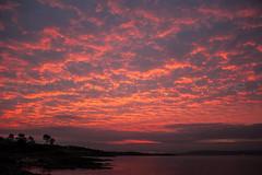 Sky On Fire (Photographer Dave C) Tags: light sunset sea sky sun seascape colour beauty canon landscape bangor stunning ni 2014 superdave northernirealnd creativephotography twitter canon400d mygearandme
