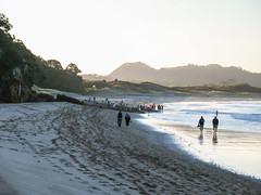 141 - Hot Water Beach