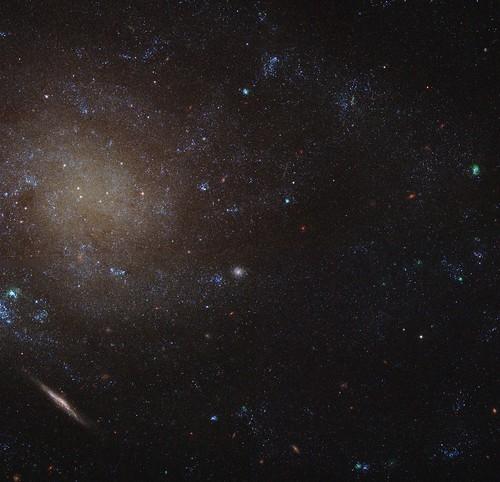 spiral galaxy hubble hst hla lowsurfacebrightness pgc930 eso4731 leda930 ugca4 ddo223 ngc45