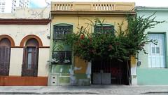 Montevideo 2013 (Gabri Le Cabri) Tags: street house flower tree green yellow beige montevideo