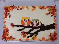 Whooo who (owls!)