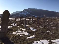 Cemetary of Akna City (Alexanyan) Tags: արցախի հանրապետություն ակնա akna armenian azeri muslim tomb armenia agdam nagorno karabakh caucasia mountainous нагорнокарабахская республика լեռնային ղարաբաղ górski karabach