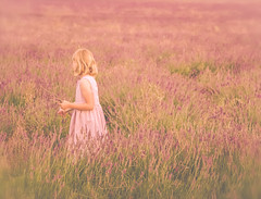 Memories (paulapics2) Tags: lavender girl summer outdoors hitchinlavenderfields nostalgic