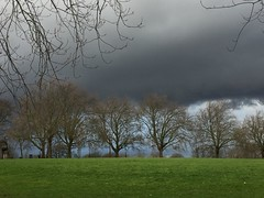Grey-Green. (JGravesend) Tags: london parklife park trees planetrees winter wetweather stormy stormclouds lush greengrass hillyfields colourclash