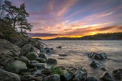 Paradise sunset (davidshred) Tags: sweden nynäshamn landscape seascape haida cpl nd6 d7200 sigma 1020 stones tree long exposure sky paradise
