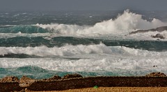 Winter Returns IMG_0831 (Ronnierob) Tags: stormyseas scatness shetlandisles