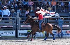 P3110117 (David W. Burrows) Tags: cowboys cowgirls horses cattle bullriding saddlebronc cowboy boots ranch florida ranching children girls boys hats clown bullfighters bullfighting