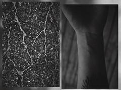 A similar vein (Emily Dozois) Tags: portrait bw white black tattoo self project diptych day hand veins 365 concept selfportraitproject 365days 365dayproject emilydozois