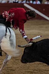 Pablo HERMOZO DE MENDOZA (Franz EDEN) Tags: cheval bull toro taureau fêtesdebayonne fiestabrava rejon tauromachie banderilles pablohermosodemendoza