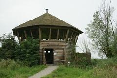 DSC06396 (Ton Smilde) Tags: oostvaardersplassen naturereserveinthenetherlands