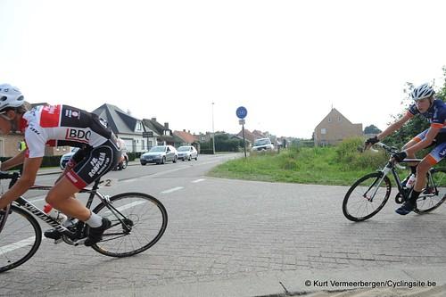Geel Oosterlo  (241)