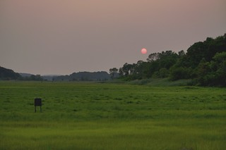 Salt Marsh Smoky Sunset