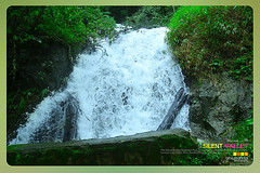 Silent Valley---------------10 (Binoy Marickal) Tags: india green tourism nature water rain kerala mala palakkad evergreenforest treaking silentvalleynationalpark nilgirihills mannarkkad mukkali kuzhur indiabinoymarickal