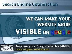 Search Engine Optimisation (wingnutwebsites) Tags: search engine surrey websites business local farnham seo wingnut optimisation
