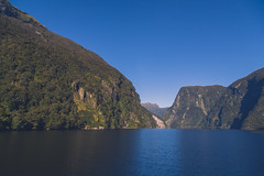 Bitt-n.com - Doubtful Sounds, New Zealand (Travlr.Photography) Tags: newzealand water photography dolphins nz sound fjord teanau travlr doubtfulsounds travlrphotography