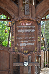 Seven Dwarfs Mine Train (disneylori) Tags: disney disneyworld wdw waltdisneyworld magickingdom fantasyland enchantedforest newfantasyland sevendwarfsminetrain