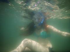 9/1/2014 (Bo Chambers) Tags: summer usa fish boat underwater snorkel florida stuart snorkeling boating indianriverlagoon