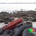 Marine trash - large road divider
