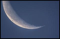 Horn (TheTherapist) Tags: sky moon planet astronomy lunar celestron nexstar