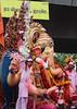 Lalbaugcha Raja showered with money ([s e l v i n]) Tags: india elephant ganesha god ganesh idol bombay elephantgod mumbai hinduism deity raja visarjan ganpati lordganesh lalbaug hindugod ganeshotsav lalbaugcharaja ganeshvisarjan ganeshfestival hindudeity chinchpokli ©selvin lalbaugcharajavisarjan lalbaugchaganesha chichpokli