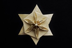 Lemon Squeezer Star (Byriah Loper) (Byriah Loper) Tags: paper origami hexagon polygon tessellation paperfolding byriahloper
