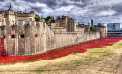 Blood Swept Lands and Seas of Red... (scrapping61) Tags: england unitedkingdom poppies moat legacy toweroflondon sincity artinstallation tistheseason 2014 scrapping61 daarklands trolledproud trollieexcellence pinnaclephotography worldwar1centenary