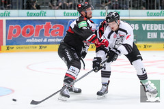"DEL15 Kölner Haie vs. Thomas Sabo Ice Tigers 19.09.2014 019.jpg • <a style=""font-size:0.8em;"" href=""http://www.flickr.com/photos/64442770@N03/15105370248/"" target=""_blank"">View on Flickr</a>"