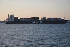 MSC Rafaela, Westerschelde (Arnold Metselaar) Tags: netherlands schip rivier scheepvaart fietsvakantie westerschelde vrachtschip