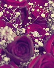 """she said yes"" (l o j o d a n i) Tags: flowers wedding red roses love rose diamonds canon asian photography eos engagement asia taiwan jewelry ring diamond romantic  taipei proposal engaged proposed"
