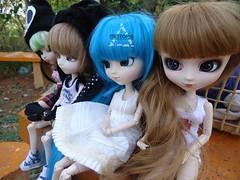 E de outro...... (Meteor-a) Tags: cute doll luna chester louise kawaii pullip anahi hatsune merl miku isul minzy