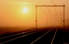 sunrise over the misty train track (Explored) (HansHolt) Tags: morning mist reflection misty fog sunrise early vanishingpoint shiny track perspective railway pole silence rails emptiness ochtend zonsopgang reflectie stilte leegte vroeg perspectief bovenleiding overheadline verdwijnpunt canonef24105mmf4lisusm spoorlijn treinspoor catenarywire canoneos6d elitegalleryaoi