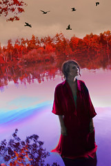 canvas (angelaugustina) Tags: pink red orange lake black love water birds fairytale waiting different looking purple fineart fantasy redlips conceptual dreamer magical reddress lakefront whimsical symbolism storytelling redleaves searching fineartphotography unrealistic purplewater brookeshadeninspired