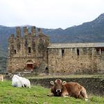 Empordà_1071 thumbnail