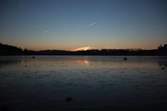 Untreusee gefroren (magicdeu1) Tags: eiszeit eis untreusee frost dauerfrost see zugefroren sonnenaufgang spiegel spiegelung hof bayern wasser blume eiskristalle kristalle flugzeuge