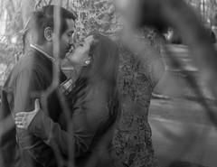 Kissin' in a tree (Mrsbridges2013) Tags: portraits blackandwhite kiss hideaway branches tree bostoncommon boston marriage couple love photoshoot engagement engaged sonya7ii sony