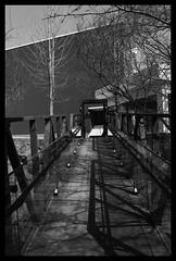 _4A_DSC2136 (aestheticsofdailylife) Tags: blackandwhite bw a coolpix coolpixa 28mm nikon nikkor f28 dx apsc winter landscape