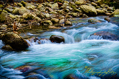 Smoky Mountain National Park (Photography by Butzin) Tags: trees water leaves rocks flowing safe greatsmokymountains greatsmokymountainsnationalpark mountainstream
