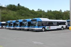 2004 New Flyer D40i #24411 (busdude) Tags: new bus flyer community ct transit motor society mbs newflyer invero communitytransit d40i
