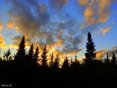 Another sunset. (Yolanta Z) Tags: stagathe