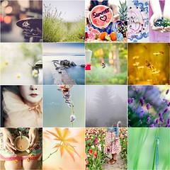 TILT 6/26/2014 (Sandra H-K) Tags: inspiration collage fdsflickrtoys mosaic tilt eyecandy notmyphotos thingsilovethursday