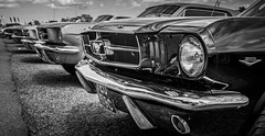 Mustangs (Suggsy69) Tags: blackandwhite bw ford car blackwhite automobile mustang mikon d5200