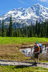 Young Hiker & Mount Rainier (Don Geyer) Tags: morning boy wild summer usa mountain mountains male nature boys ecology childhood kids children landscape outside outdoors volcano landscapes us washington kid scenery child unitedstates natural outdoor scenic meadow meadows peak mountrainier mountrainiernationalpark males wa backcountry environment mornings summertime wilderness peaks habitat volcanic scenics summers ecosystem volcanos cascaderange environments wilds habitats summertimes ecosystems naturalenvironment uncultivated naturalenvironments ayoungbackpackeradmirestheviewalongthewonderlandtraili ayoungbackpackeradmirestheviewalongthewonderlandtrailinindianhenry'shuntingground