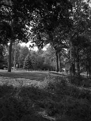 Haverhill Rte. 110 Rest Area 1 (Boneil Photography) Tags: 2003 canon ma powershot sd10 haverhill digitalelph ixusi boneilphotography brendanoneil