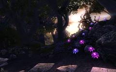 2 (dark_niakris) Tags: oblivion