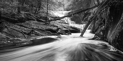 Below The Fall (GarrettUhde23) Tags: statepark park longexposure blue trees summer blackandwhite bw brown white inspiration black reflection tree green nature water rock misty canon reflections flow daylight blackwhite waterfall moss rocks stream slow state connecticut relaxing calming ct peaceful sunny falls soul slowshutter shutter canon5d brook flowing meditation granby spiritual sunrays 35 majestic runningwater soulful inspiring bwphotography sunray blackandwhitephotography enders flowingwater watermeditation granbyct waterfog endersfalls waterlongexposure ctwaterfall connecticutwaterfall 5dmkiii 5dmk3 northernct waterlongshutter 72814july282014