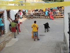 FiestasVispal14-077