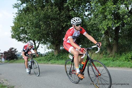 Geel Oosterlo  (143)