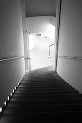 Staircase at an Exhibition (eross_flickr) Tags: leica city urban blackandwhite bw white house black paris stairs interior 28mm rangefinder staircase m8 voigtländer ultron leicam8