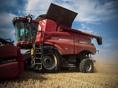 Moisson de bl avec une Case IH Axial-Flow 7230 AFS (agriphotoproduction) Tags: flow photo 7 case fergusson production agriculture 50 coupe afs ih massey vido axial agri 6490 7616 7230 mtres agricoles agriphoto