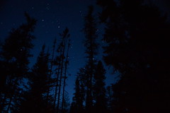 starry starry nights (ktLaurel) Tags: blue camping trees summer night stars twilight woods country qubec parcnationaldesgrandsjardins